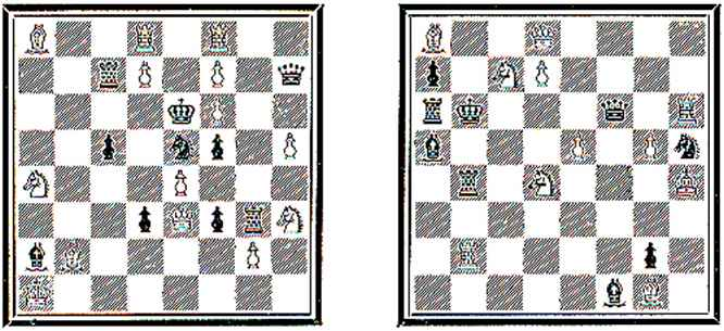 solutions chess guide chess master. Black Bedroom Furniture Sets. Home Design Ideas